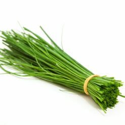 Herbs Seeds