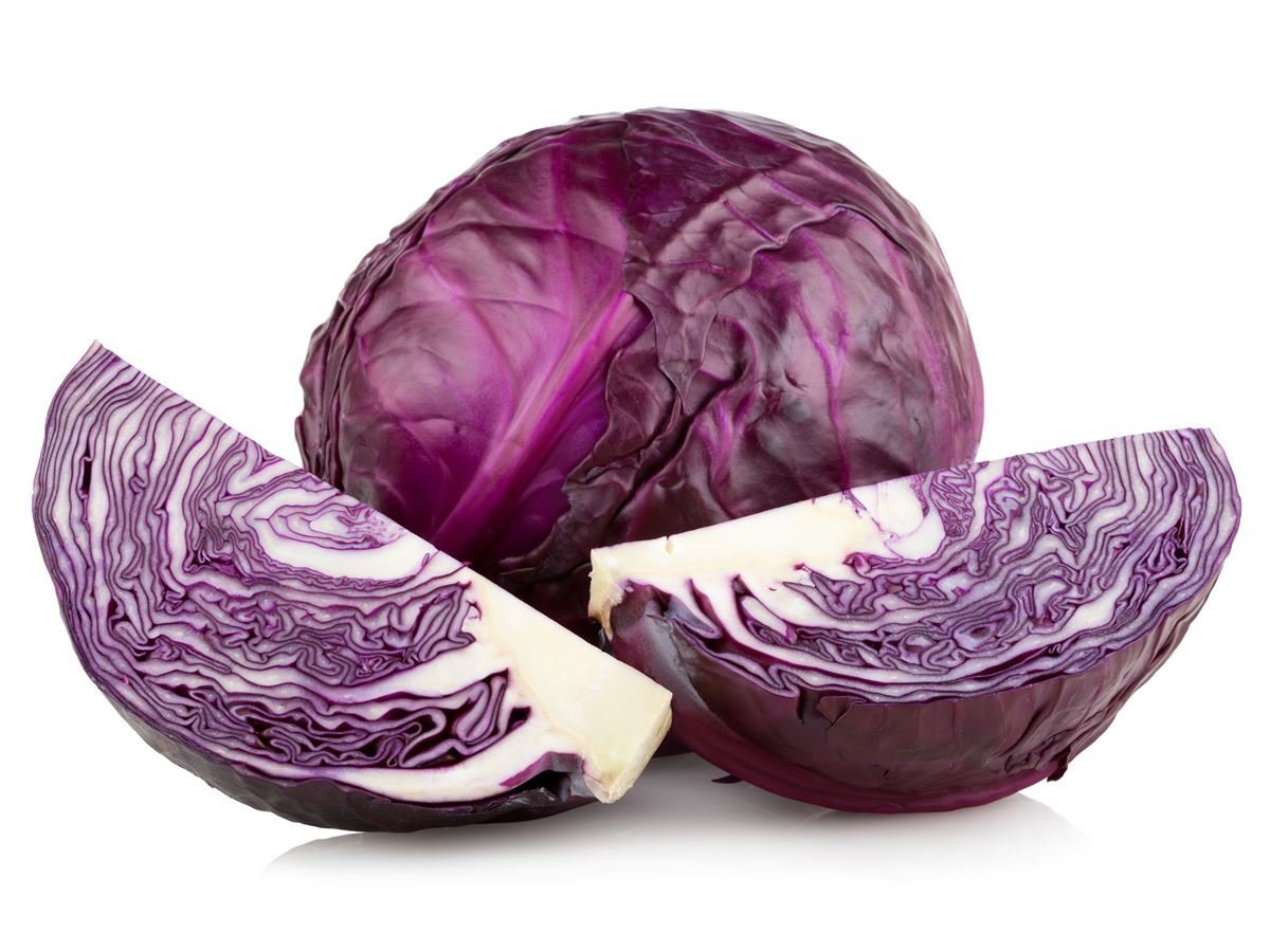 Red Cabbage Seeds Pack Of 20 Seeds Seedsnpots Com
