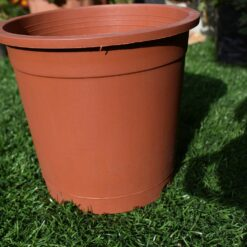 Plastic pots for plants 6 inch