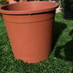 Plastic pots for plants 6 inch