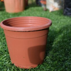 Plastic pots for plants 3.5 inch