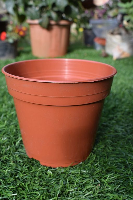 Round plastic 4 inch pots
