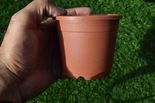 Plastic pots for plants 3.5 inch