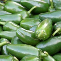 Pepper Jalapeno M seeds