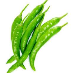 Chilli Agni seeds