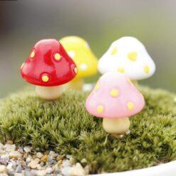 Garden Acessories