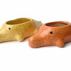 Crocodile Ceramic